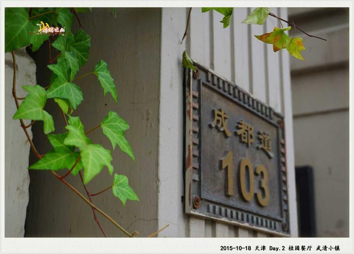 DSC05978_副本.jpg