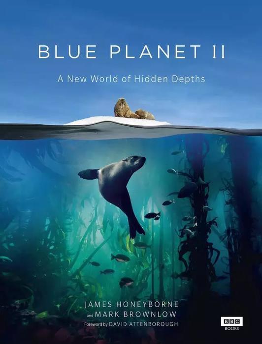 蓝色星球Ⅱ.jpg