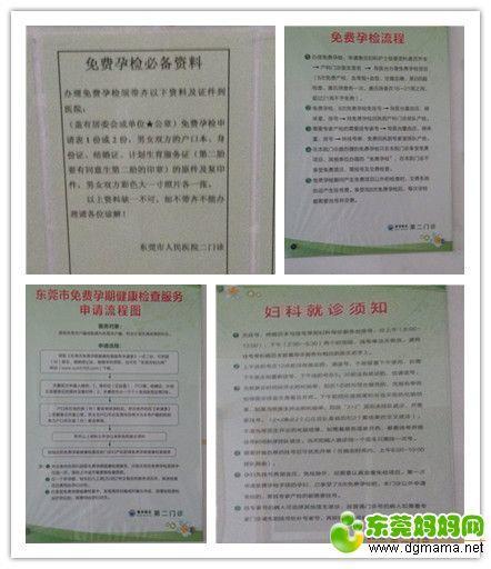 zheng11.jpg