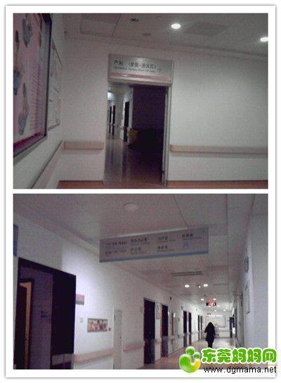 IMG_20150111_113104_副本.jpg