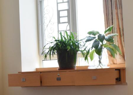 5植物.jpg
