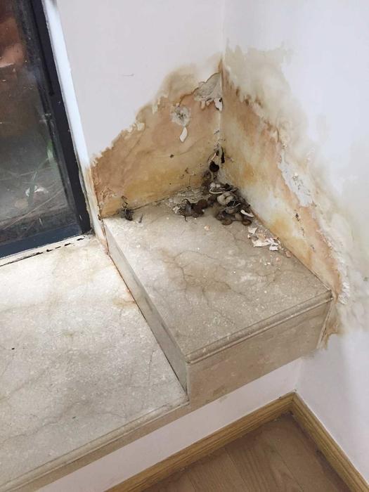 半落地窗窗角渗漏