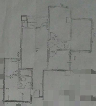 5962f7ce4bc73.jpg