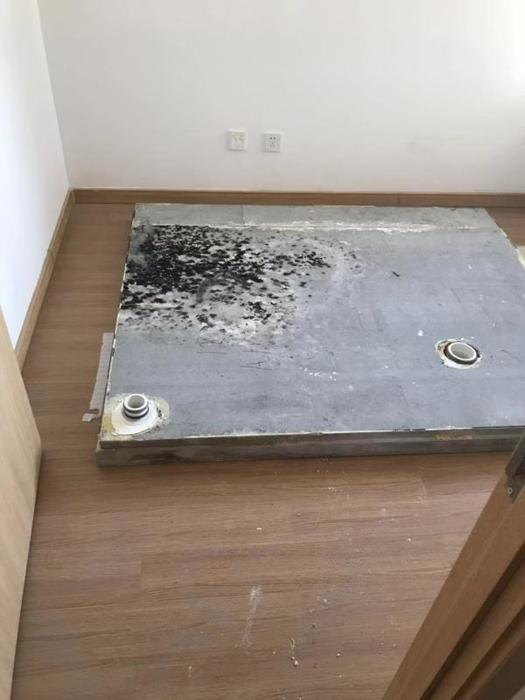 一體衛浴底板.jpg
