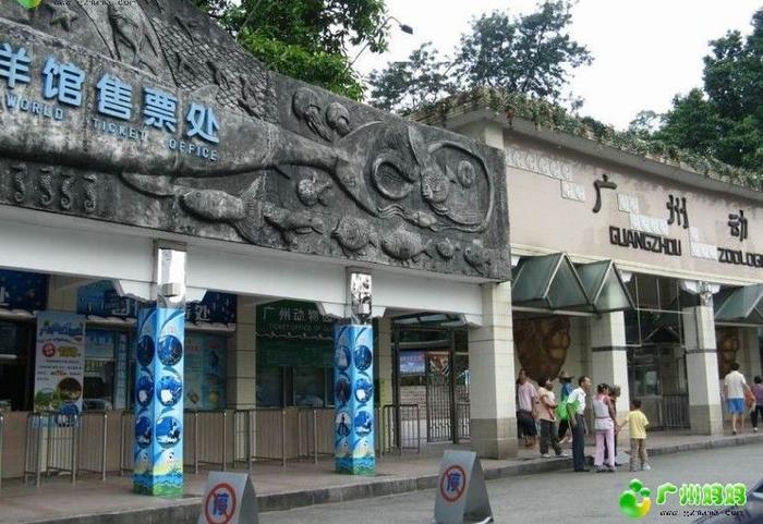 8月22日(周日)再聚广州市海洋馆 动物公园,报名及回顾