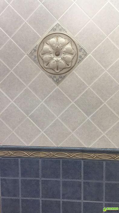 厕所墙砖.jpg