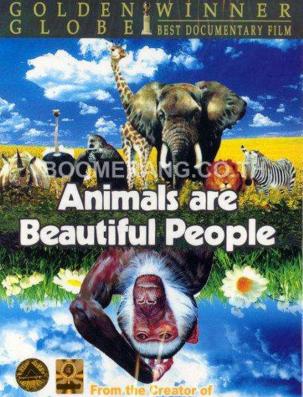 可爱的动物.png