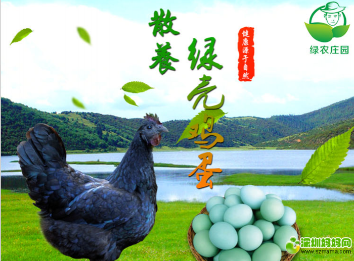 土鸡蛋2.png